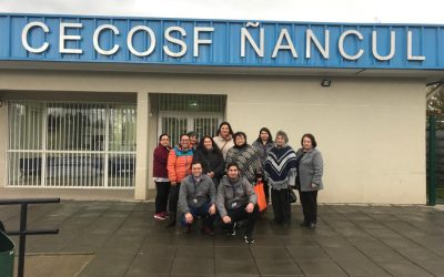 Visita CECOSF Ñancul