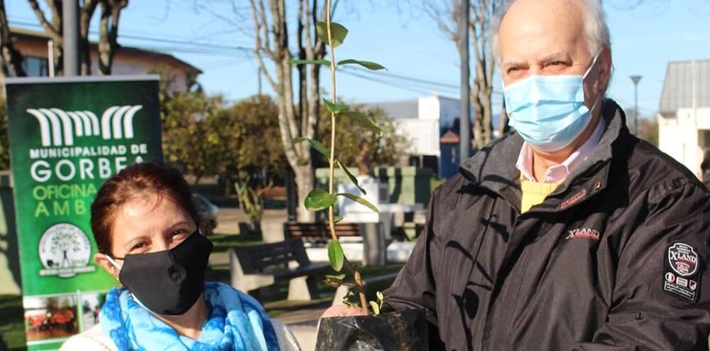 """Municipio lanza programa """"Por un Gorbea sanitizado, limpio y verde"""""""